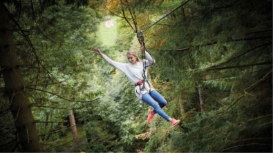 Tree Top Adventure Zip Wire at Go Ape