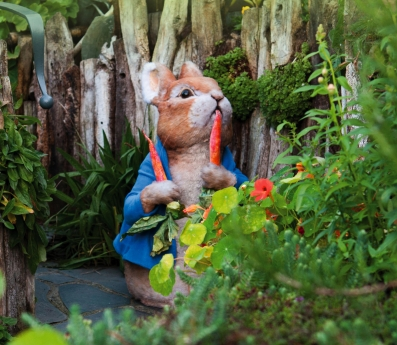 Peter-Rabbit-1