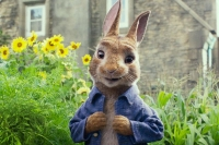 peter-rabbit-film-banner